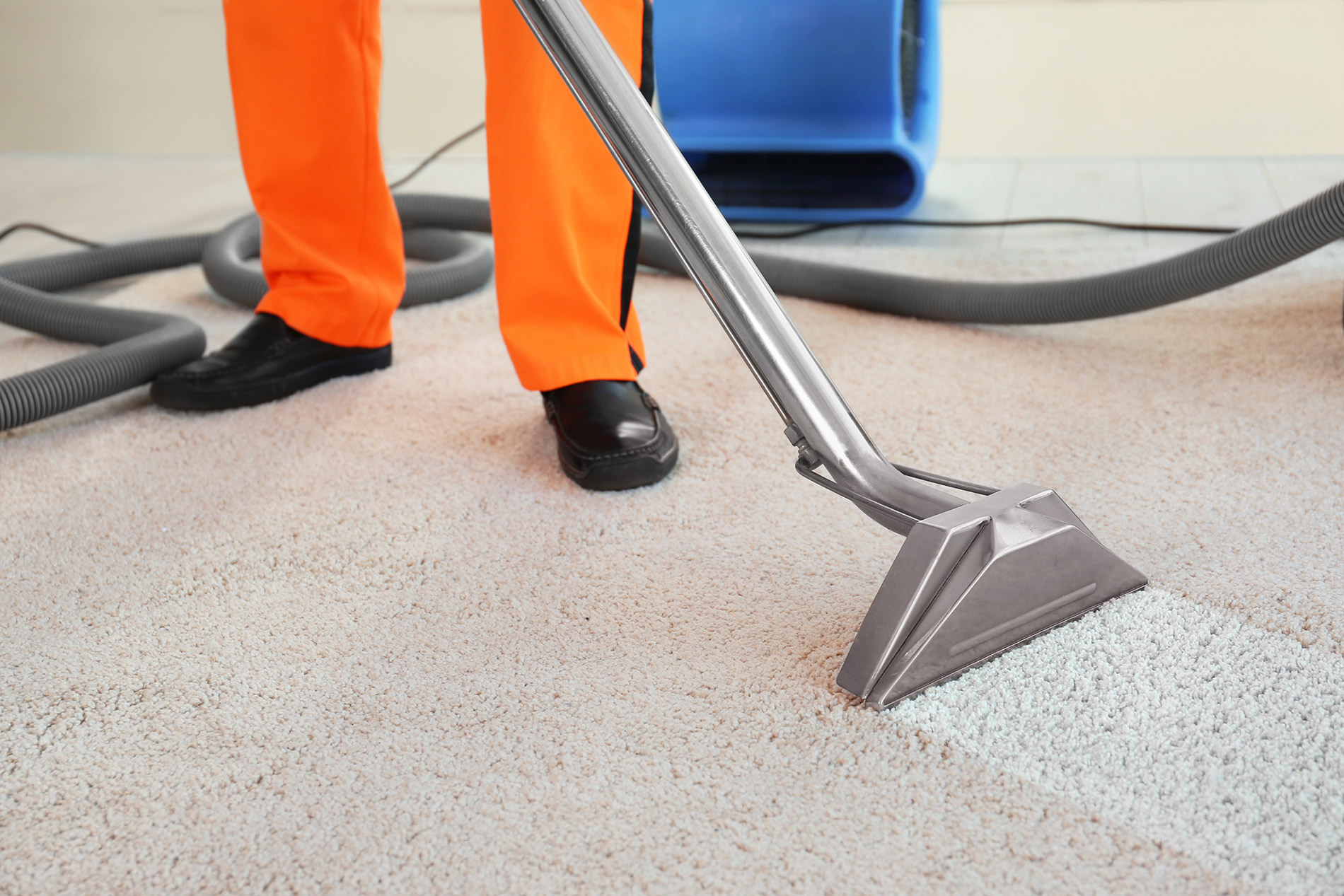 Carpet Water Removal Long Island